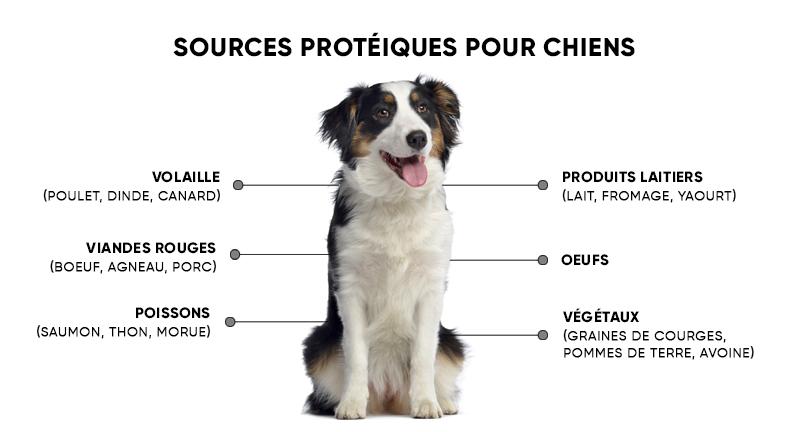 animigo-dk-plenty-of-protein-info