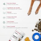 /images/product/thumb/digestive-probiotics-for-dogs-3-fr.jpg