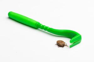 remove-a-tick